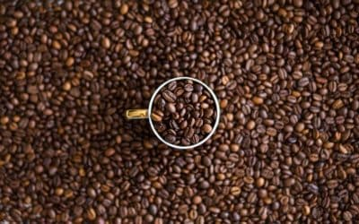 Coffee continues 8-month slide, no Brazil freeze in sight