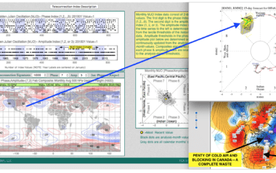 Soybeans explode on Argentina drought – How the MJO (predicted by CLIMATECH) pressured natural gas prices