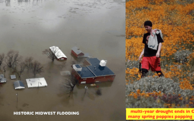 Historical Midwest floods: Impacts on agriculture. What is causing it? El Nino or  low sunspots?