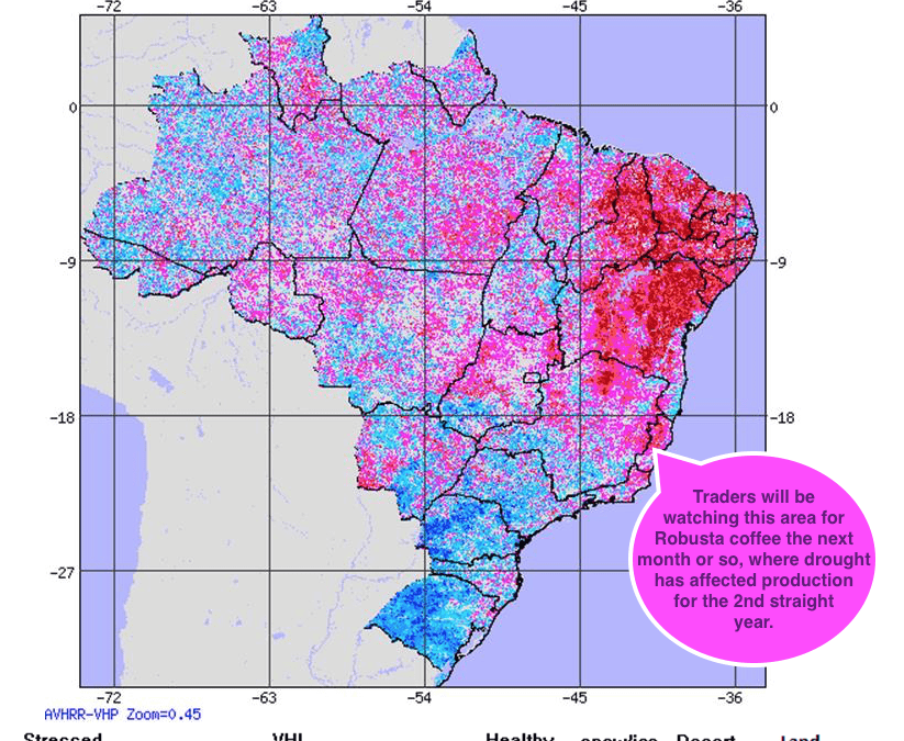 While Floods Hit Argentina Soybeans, A Little known Area in NE Brazil is Affecting Coffee Trading