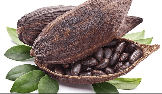 What's behind the 40% move higher in cocoa prices? The top producers fight to protect forests