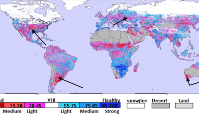 How a weakening La Niña and  positive Indian Dipole are creating new worries for global grain crops. Will it last?