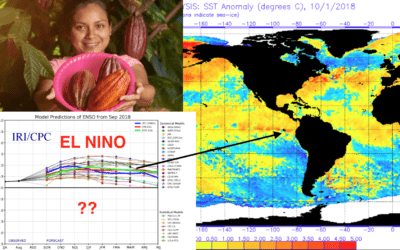 Has cocoa prices bottomed? Commodities breaking out with higher crude oil, Brazil Real and talk of El Nino