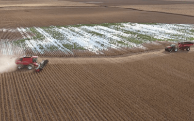 Prevent plant options for farmers as Midwest flooding continues?