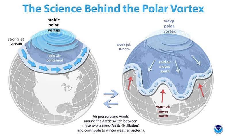Lowest Arctic sea ice in years and the importance of a polar vortex for  natural gas prices