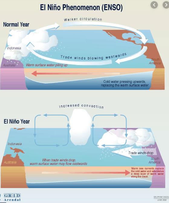 El Nino has returned