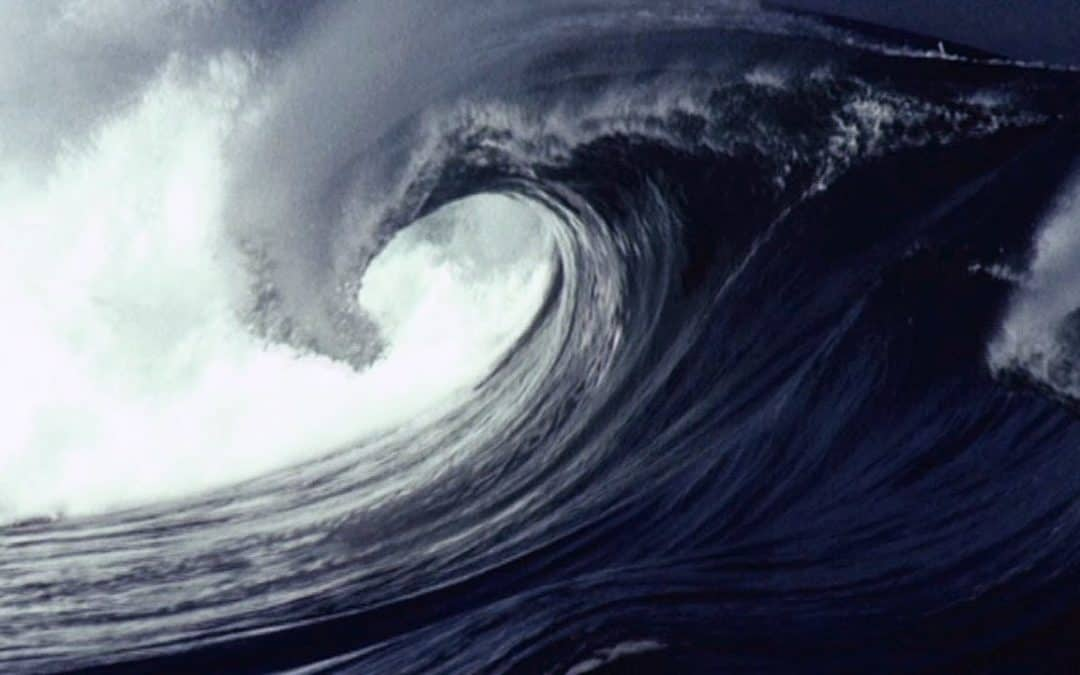 Oil Price Tsunami: How It Happened And The Impact on Corn Prices and Renewables
