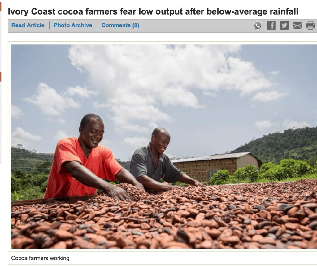 Ivory Coast cocoa farmers.