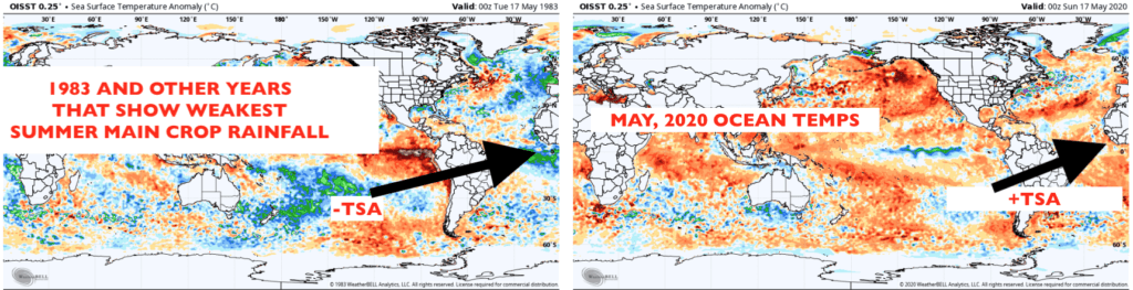 Ocean temps and years with weakest summer rainfall in relation to coffee areas.