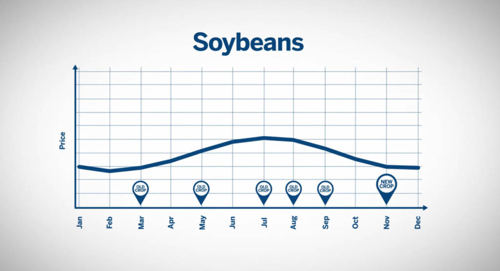 Soybean prices on a seasonal basis.