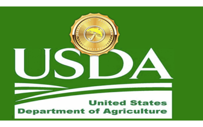 USDA Crop Report Wednesday, A Look At Growing World Grain Crops. Cocoa Outlook And My Weather Spider