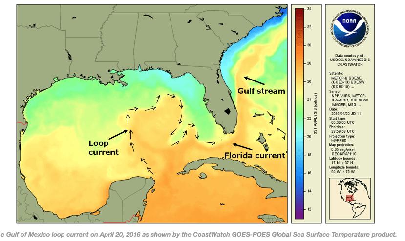 tropical loop current