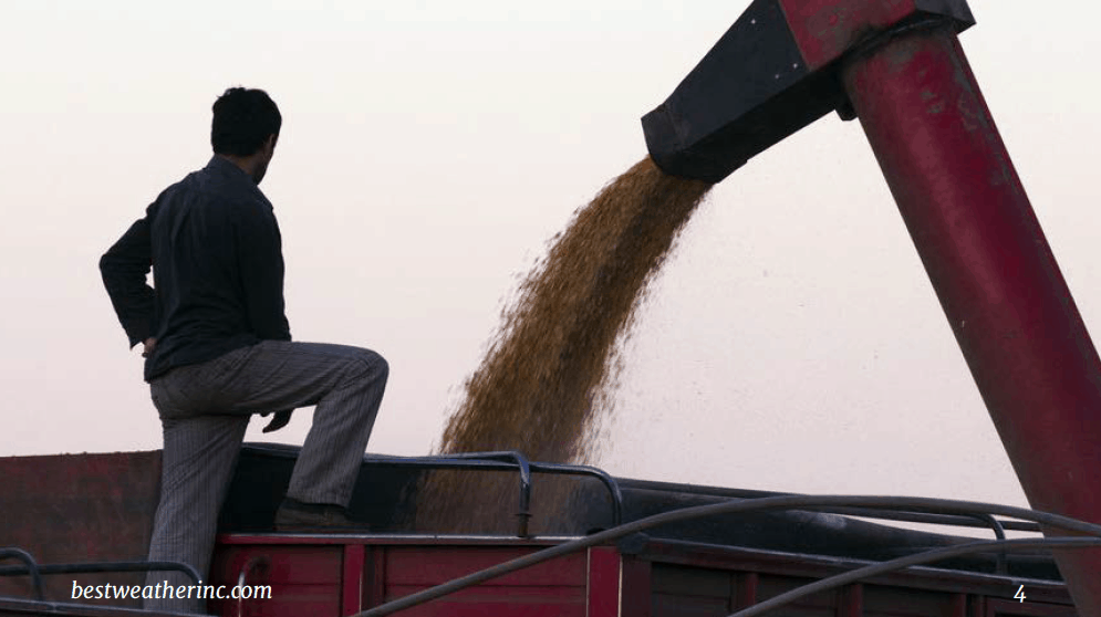 The explosion in commodities: what you need to know as a farmer or trader