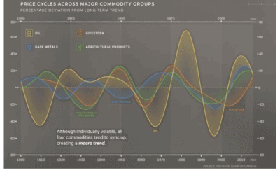 HISTORICAL MOVES IN SOME COMMODITIES (JIM ROEMER VIDEO ABOUT WEATHER AND SUPER CYCLES)