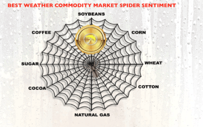 best weather spider and some trade ideas
