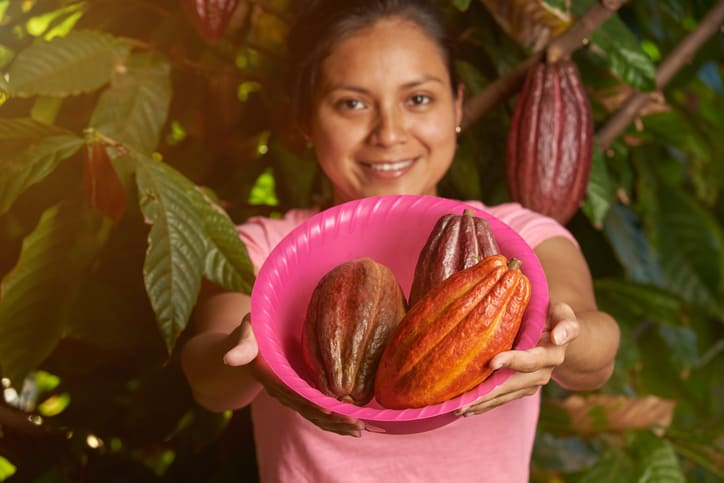 Which climatic factors would take cocoa prices out of the doldrums?