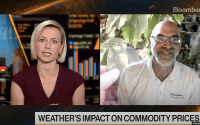 TRADING coffee & other COMMODITIES ON DROUGHTS, CLIMATE CHANGE, FROSTS AND FLOODS